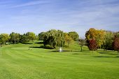 Fairway,  Green And Golfer poster