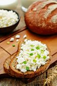 image of whole-grain  - healthy Breakfast with whole grain rye bread cottage cheese and milk  - JPG