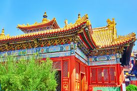 picture of lamas  - Yonghegong Lama Temple - JPG