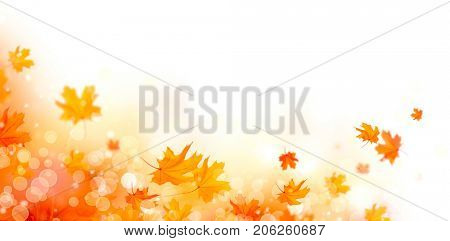 poster of Autumn background. Fall Abstract autumnal background with colorful leaves, on wind, colorful bright