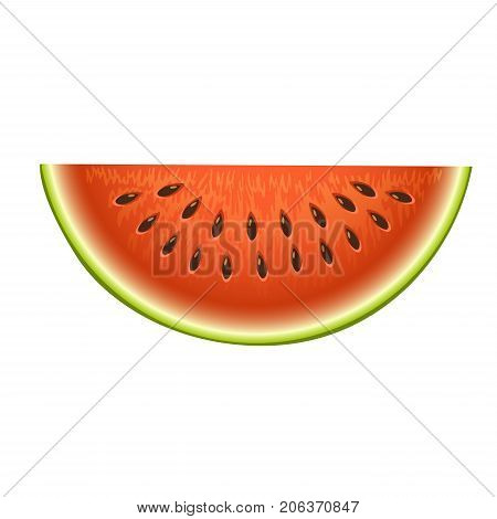 poster of Ripe striped watermelon realistic juicy healthy vector illustration. Slice green isolated ripe melon. Vegetarian diet freshness dessert. Water refreshment delicious fruit.
