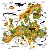 Geography Europe_1 poster