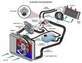 Automotive Cooling System infographic diagram showing process and all parts included radiator hoses  poster