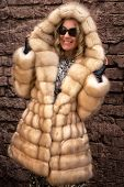 The woman in a fur coat. A coat from arctic fox over Brick wall poster
