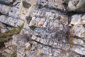 Detail And Texture Of Metamorphic Rocks