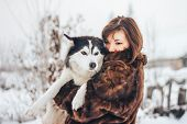 Pretty Husky Dog Outdoor In Womans Hands poster