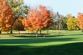 Golf Green And Flagstick With Colorful Fall Leaves