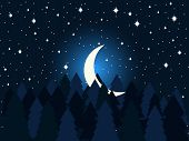 Moon In The Fir Trees Flat. Midnight, A Crescent Moon In The Starry Sky. Spruce Forest. Vector Illus poster