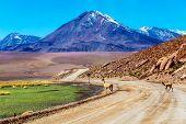 Putana River (vado Rio Putana), San Pedro De Atacama, The Atacama Desert, Antofagasta, Chile poster