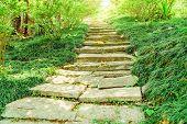 Stone Walkway In Garden, Concrete Blocks Walkway In The Garden, Garden Stone Path With Grass Growing poster