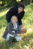 stock photo of shilling  - Couple picking mushrooms in the forest - JPG