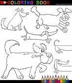 stock photo of newfoundland puppy  - Coloring Book or Coloring Page Black and White Cartoon Illustration of Funny Purebred or Mongrel Dogs - JPG