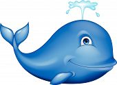Cute blue whale cartoon