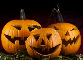 picture of funny ghost  - Halloween background with pumpkins in the Grass Bats - JPG