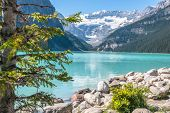 stock photo of foreground  - Lake Louise and Mount Victoria with its glacier - JPG