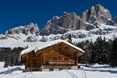 stock photo of chalet  - Chalet and trees under the snow in the idyllic landscape of the dolomiti in Trentino South Tyrol - JPG