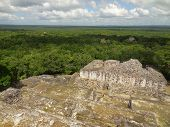 Temple Ruin At Calakmul