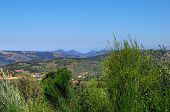 pic of guadalupe  - landscape of the spring valley near the Guadalupe Spain - JPG