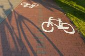 stock photo of bike path  - Bike path with a symbol of bike - JPG