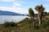 image of australie  - Famous Lake Te Anau on South Island New Zealand - JPG