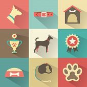 foto of dog footprint  - Retro dog icons set - JPG