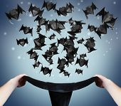 stock photo of fireflies  - Halloween origami bats fly out of the hat - JPG