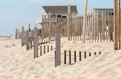 foto of outer  - dunes fencing along outer banks of north carolina in cape hatteras national seashore - JPG