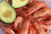 picture of tiger prawn  - Cooked Australian king prawns and avocado in a dish - JPG