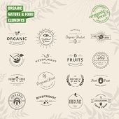 image of food label  - Set of vintage style elements for labels and badges for natural food and drink - JPG
