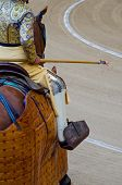 picture of bullfighting  - A picador holds the lance in a bullfight