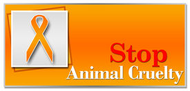 foto of animal cruelty  - Conceptual image for animal cruelty with orange ribbon - JPG