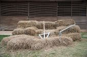 foto of hoe  - hoe and spade on stack in front of wooden farm shed - JPG