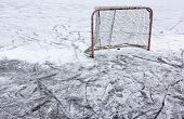 picture of ponds  - A ice hockey net on an outdoor pond rink - JPG