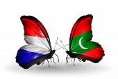 foto of holland flag  - Two butterflies with flags on wings as symbol of relations Holland and Maldives - JPG