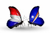 pic of holland flag  - Two butterflies with flags on wings as symbol of relations Holland and Marshall islands - JPG