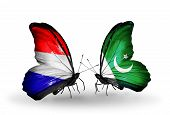 pic of holland flag  - Two butterflies with flags on wings as symbol of relations Holland and Pakistan - JPG