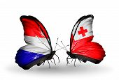 foto of holland flag  - Two butterflies with flags on wings as symbol of relations Holland and Tonga - JPG