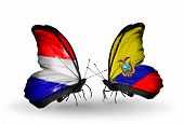 stock photo of holland flag  - Two butterflies with flags on wings as symbol of relations Holland and Ecuador - JPG