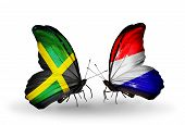 foto of holland flag  - Two butterflies with flags on wings as symbol of relations Jamaica and Holland - JPG