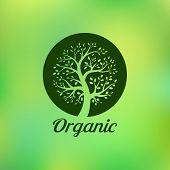 picture of emblem  - Organic green tree logo - JPG