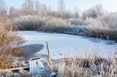 image of ponds  - Small frozen pond - JPG