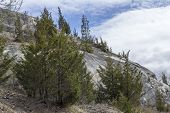 foto of hilltop  - Clouds stretch across sky of evergreen tree covered hilltop - JPG
