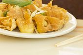 pic of chinese restaurant  - Chinese cheese wontons appetizer at restaurant served with green onion and bean sprouts - JPG