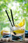picture of refreshing  - Ice Cold Summer Spirit Refreshment  with Lemon - JPG