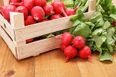 image of wooden crate  - Macro of fresh red radish vegetable in wooden crate - JPG