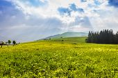 stock photo of early morning  - Mountain pasture in the early morning on a background of the sky with sunlight from behind a cloud - JPG