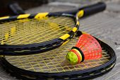 pic of shuttlecock  - Two crossed speedminton rackets with shuttlecock on them - JPG