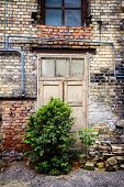 stock photo of abandoned house  - Old door of an abandoned house and a bush growing on entrance - JPG