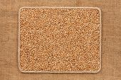 stock photo of sackcloth  - Frame made of rope with wheat grains on sackcloth as background texture - JPG