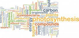 image of photosynthesis  - Background concept wordcloud illustration of photosynthesis - JPG